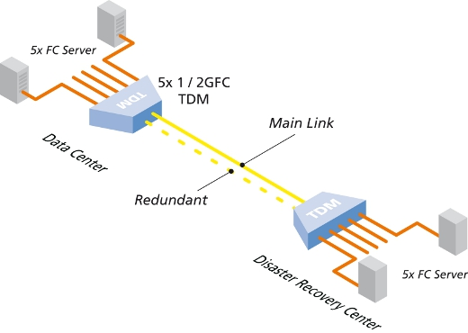 10G 5 Port 2G Fibre Channel TDM schematic