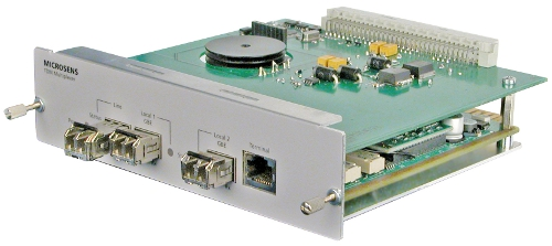 Gigabit Ethernet TDM Module
