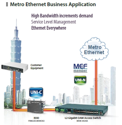 Metro Ethernet Business Application