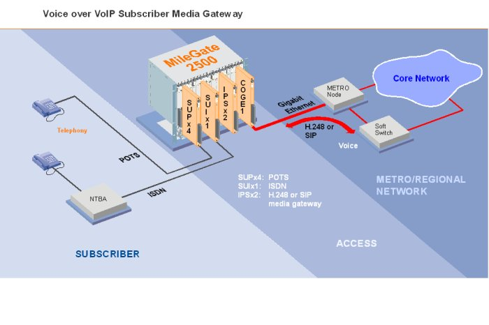 Voice over VoIP Subscriber Media Gateway